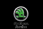 Skoda Black Service
